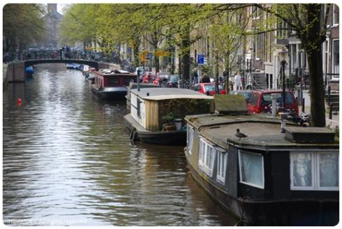 amsterdam8_347x518_g